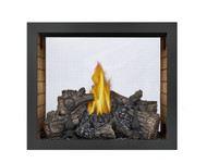 Napoleon HD81 See Thru Gas Fireplace HD81NT-1