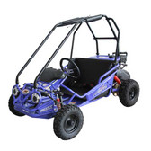 TrailMaster Mini XRS Go-Kart - Blue