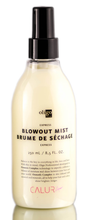 Oligo 8.5oz Express Blowout Mist
