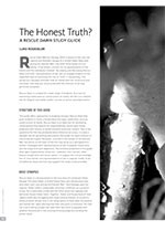 The Honest Truth?: A <i>Rescue Dawn</i> Study Guide