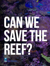 Can We Save the Reef? (1-Year Access)