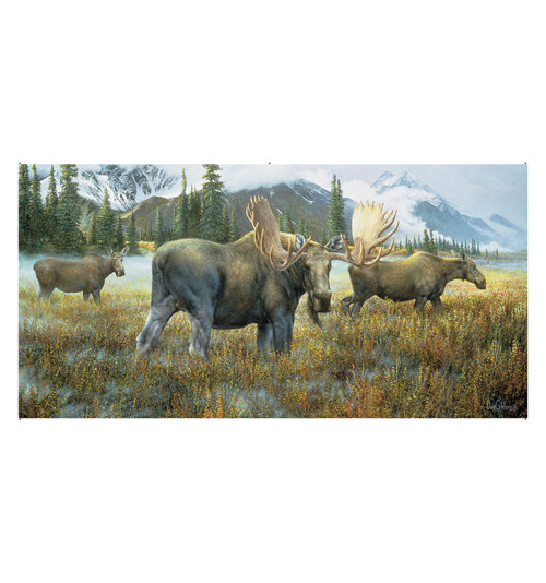 life size moose mural wall decal