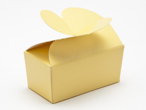 2 Choc Buttermilk Yellow B'fly Ballotin | Meridian Speciality Packaging