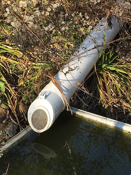 Rain Harvesting Pty Ltd Tafv98 Mozzie Stoppa Hi Flow Flap