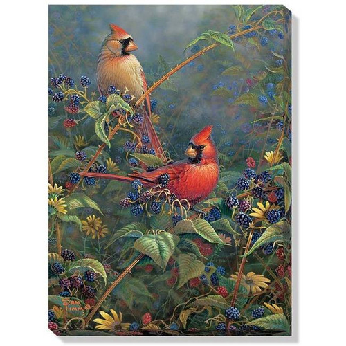 The Cardinal Hangout Wrapped Canvas Art