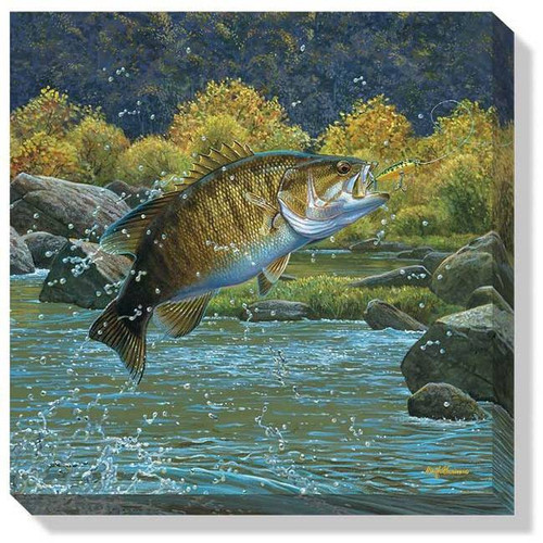 """Tail Walking (Smallmouth Bass)"" Wrapped Canvas Art"