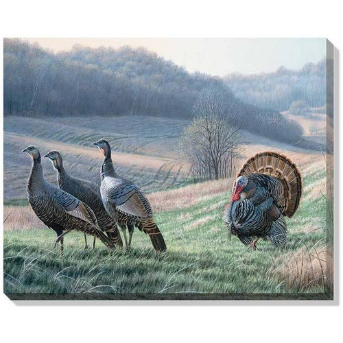 """Tempting Trio (Turkeys)"" Wrapped Canvas Art"