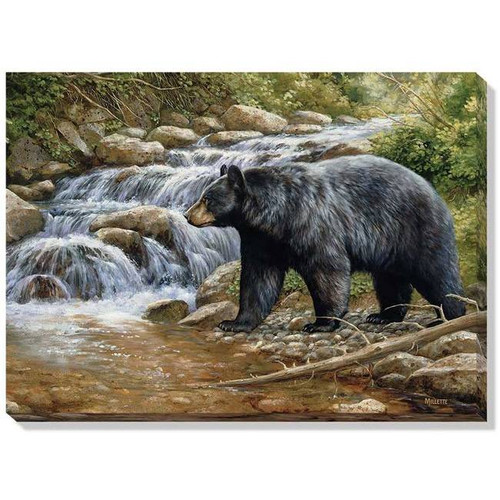 """""""Shadow Of the Forest (Black Bear)"""" Wrapped Canvas Art"""