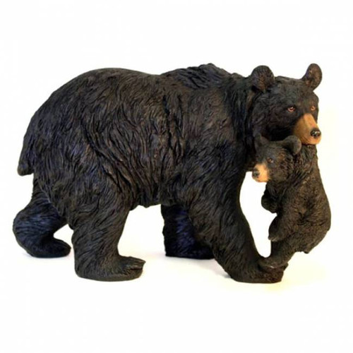Front view of the bear and cub