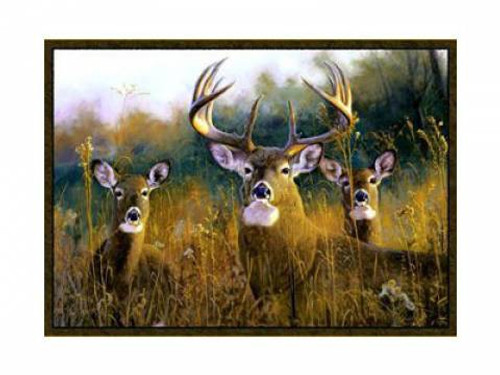 Buck Stops Here Whitetail Rug