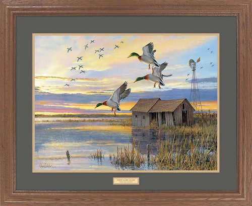 """Duck Country"" Mallard Duck Framed Wildlife Art Print"