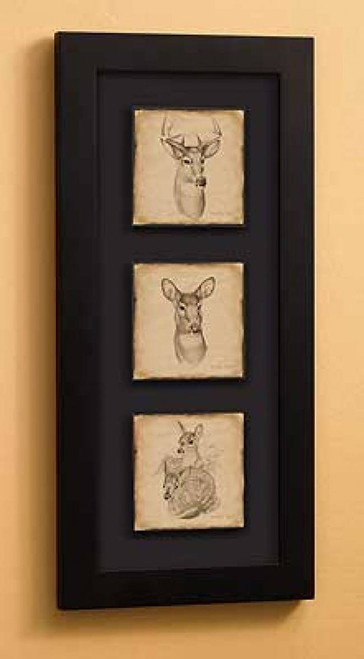 Whitetail Deer Sketch Shadow Box Art Prints