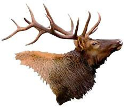 Elk Head 3D Steel Reflective Wall Art