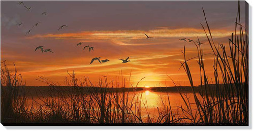 Mallard Sunset Wrapped Canvas Art