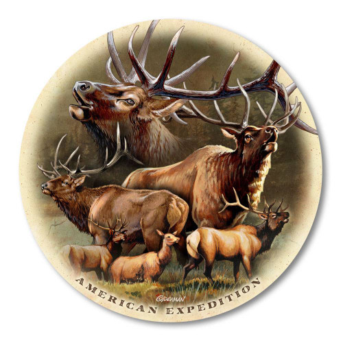 Single Elk Collage Stone Coaster