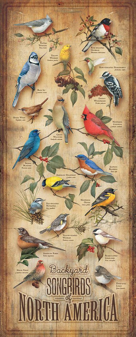 Songbirds of North America Wooden Sign