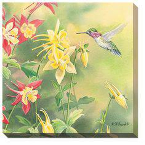 Hummingbird and Columbine Wrapped Canvas Art