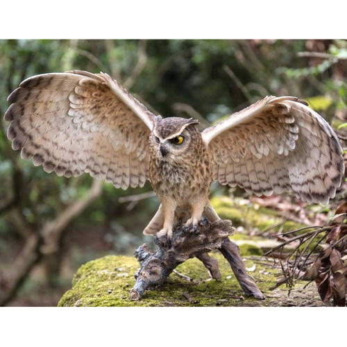 Outstretched Owl on a Log Statue