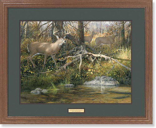 """When Seasons Change"" Whitetail Deer Framed Wildlife Art Print"