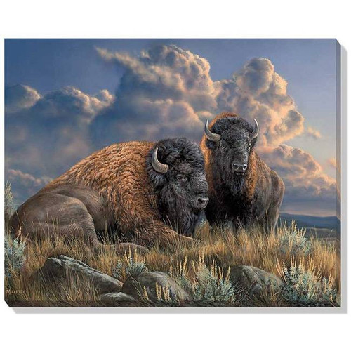 A Storm Brewing Bison Wrapped Canvas Art