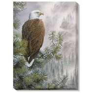 The Bald Eagle's Watchful Eye Wrapped Canvas Art