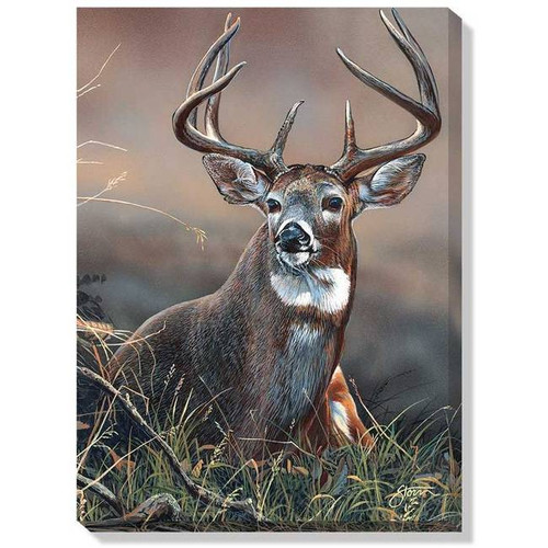 Christmas Garden Flags >> Whitetail on Guard Wrapped Canvas Art