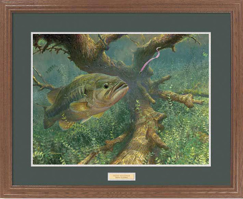 Quot Pink Ribbontail Quot Largemouth Bass Framed Art Print