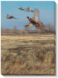 First Hunt Pheasants Wrapped Canvas Art
