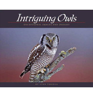 Book- Intriguing Owls Cover