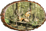 Forest Bucks Rustic Wooden Plaque
