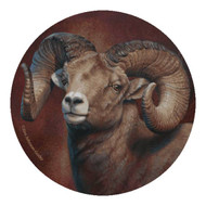 Bighorn Sheep 4-piece Sandstone Coaster Set