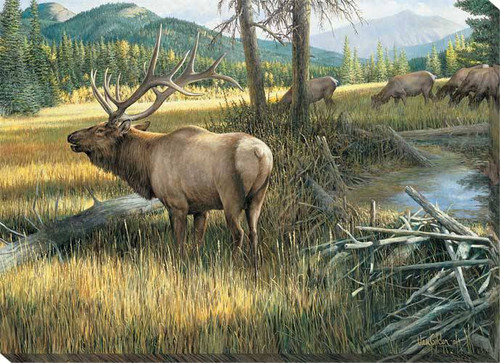 The Guardian Elk Wrapped Canvas Art