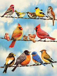 Birds on a Wire 500 Piece Puzzle