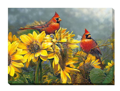 Sunny Red Birds Wrapped Canvas Art