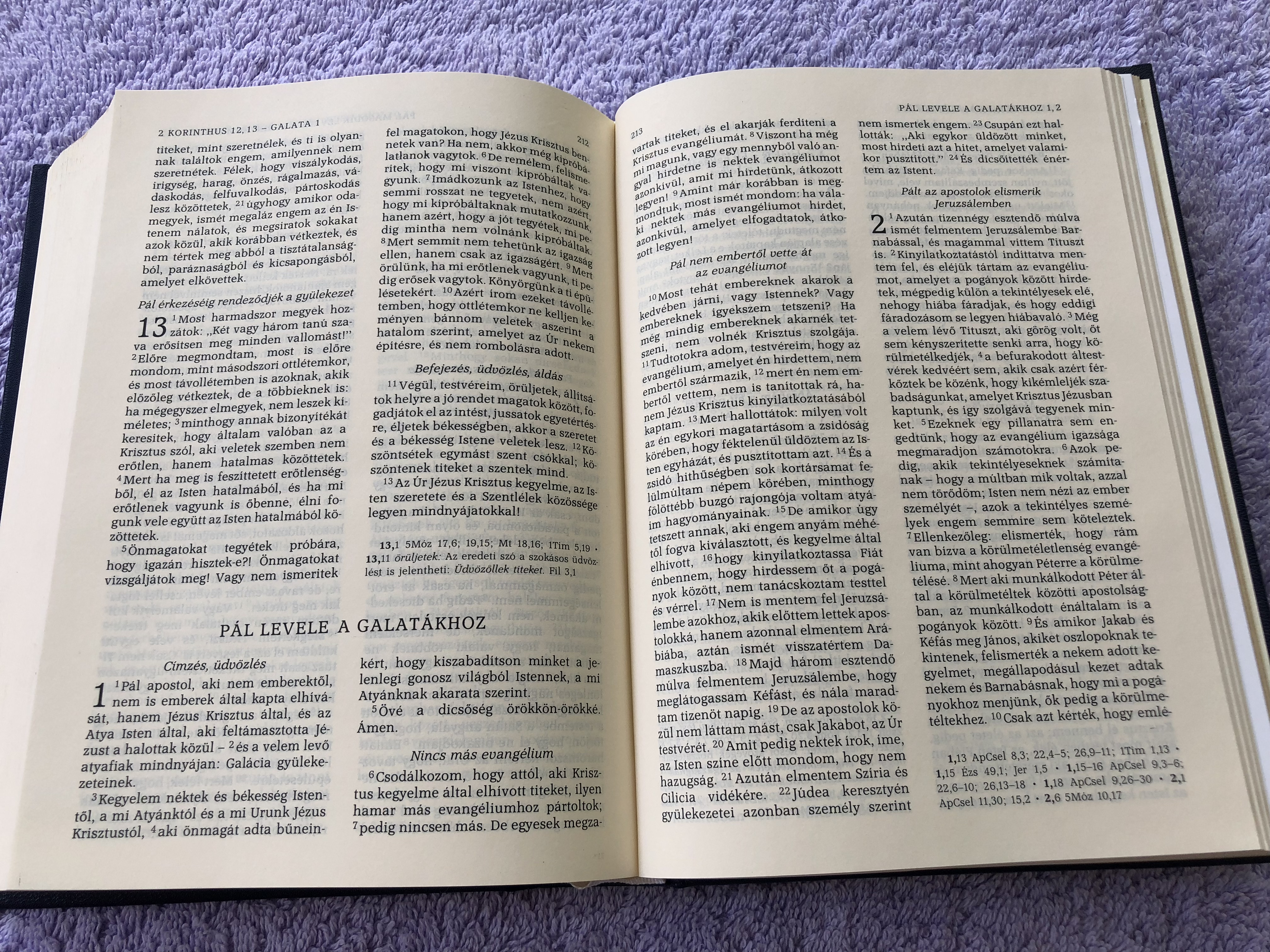 biblia-hungarian-protestant-bible-1997-print-11-.jpg