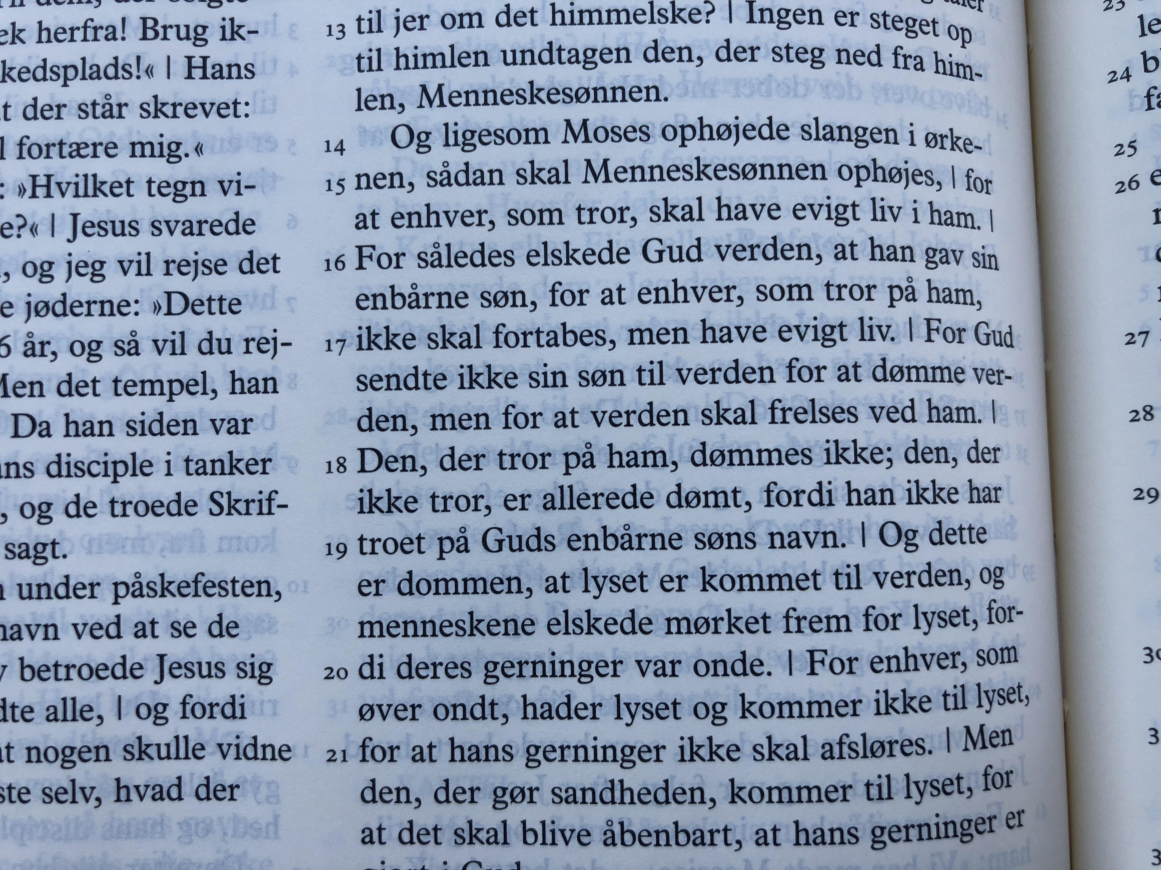 danish-bible-12-.jpg