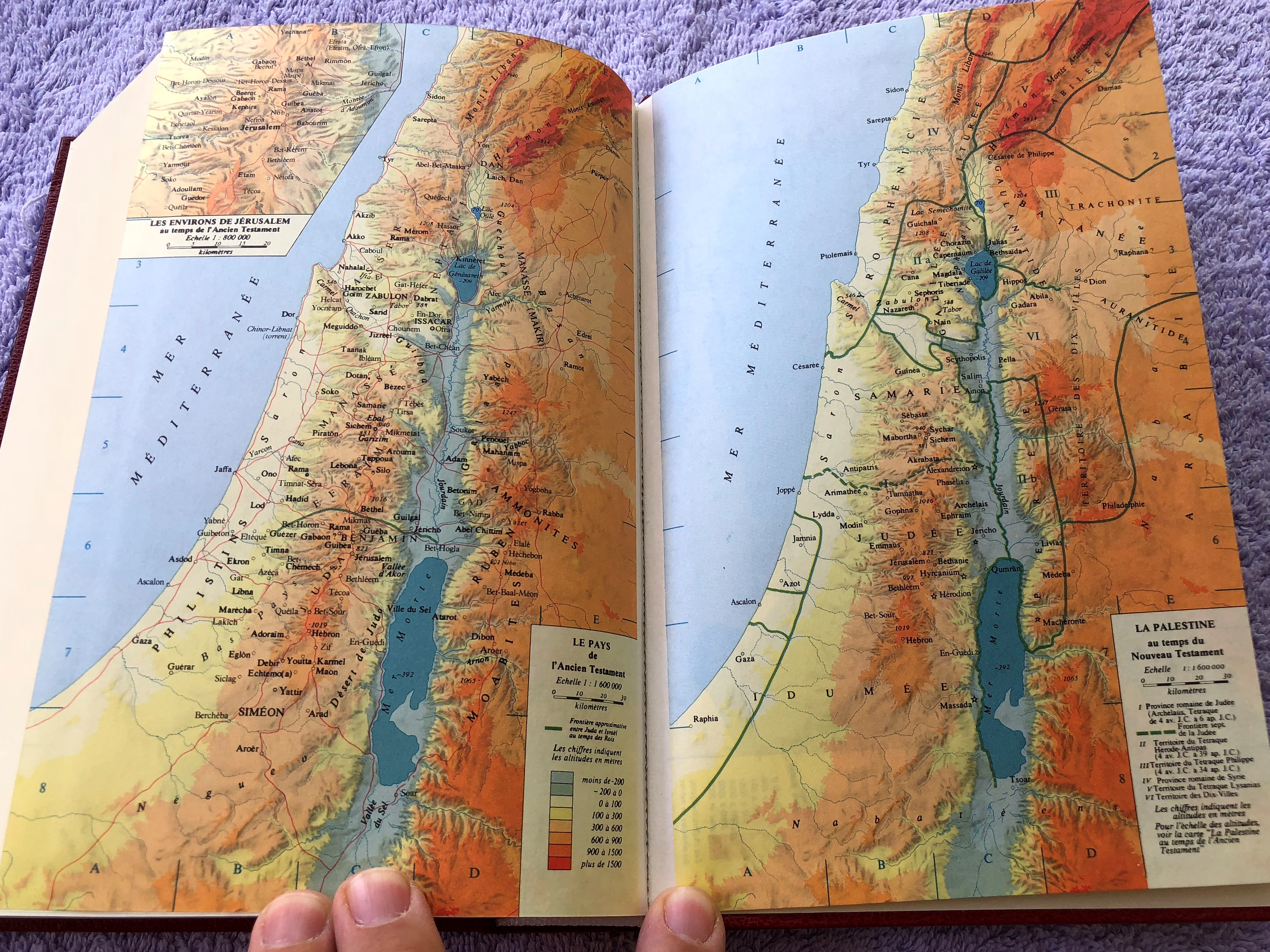 french-bible-1994-print-fch063-17-.jpg