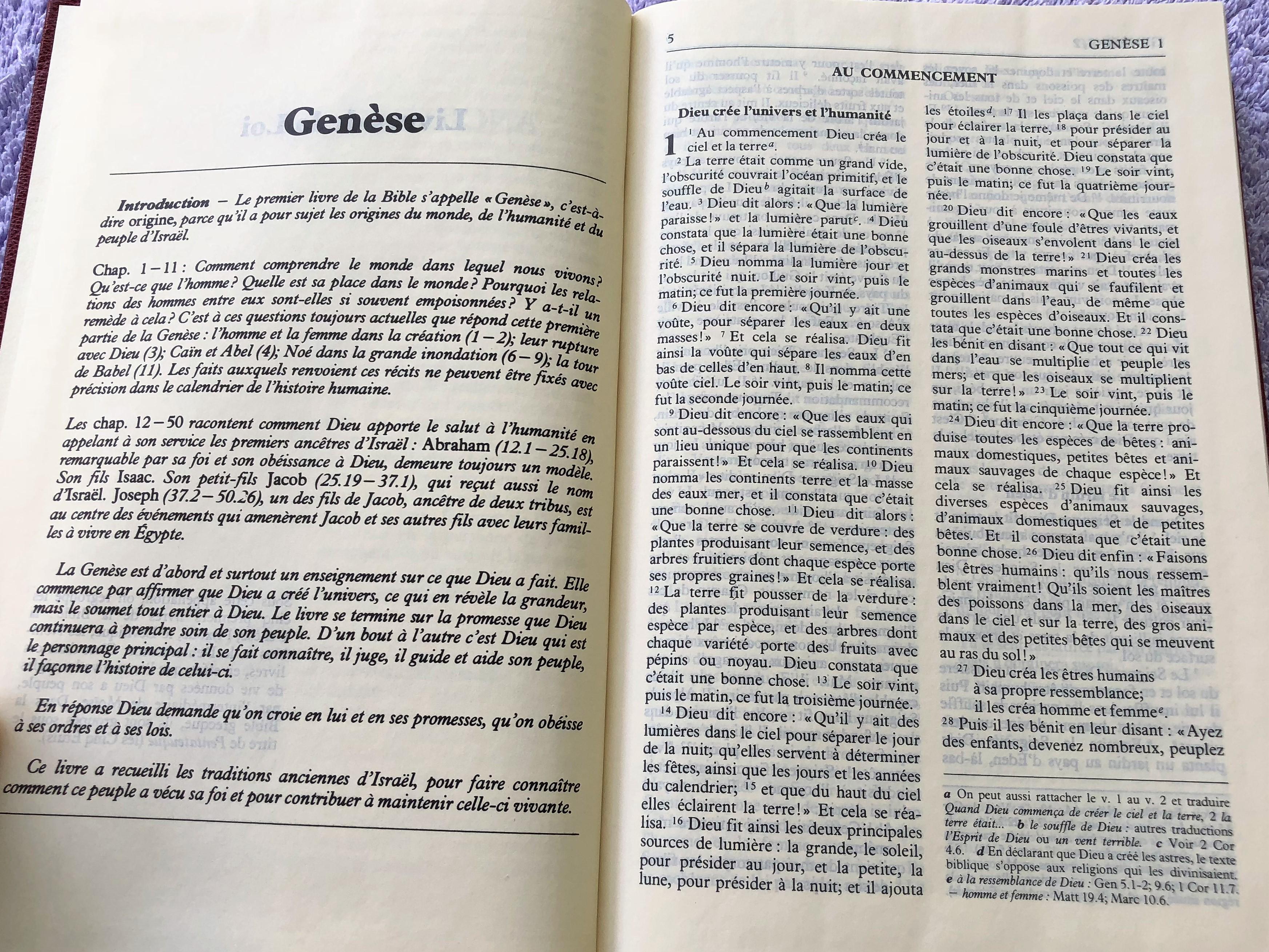 french-bible-1994-print-fch063-7-.jpg