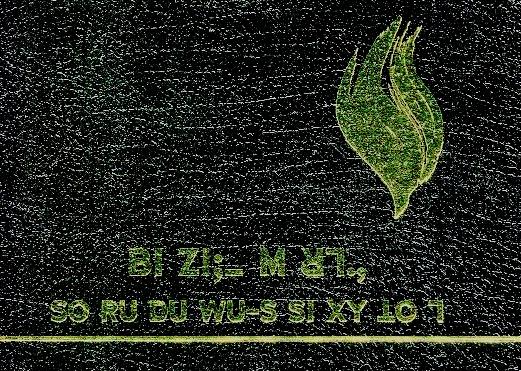 screenshot-2018-08-05-lisu-fire-bible.png