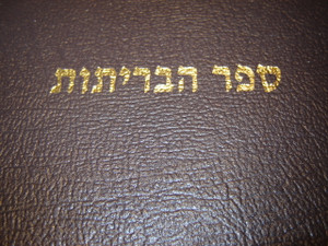 Hebrew Bible with Cross References / Leather Bound / Golden Edges / Hebrew Ol...