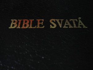 Czech Large Bible / Bible Svata / Large Print / KAV 689-2-073 [Hardcover]
