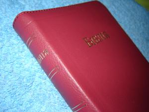 Ukrainian Burgundy Leather Bible / Zipper, Golden edges, Maps / Ukraina