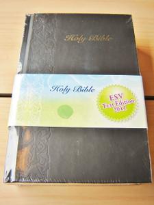 Chinese - English Bible / New Chinese Version - ESV English Standard Version