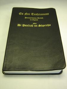 Pennsylvania Deitsh - English Bilingual New Testament / Es Nei Teshtament Mitt Di Psaltah un Shpricha