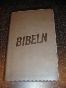 Swedish New Living Bible for Young People / Nya Levande Bibeln/ Gray Edges, Gray Imitation Leather Cover, Footnotes