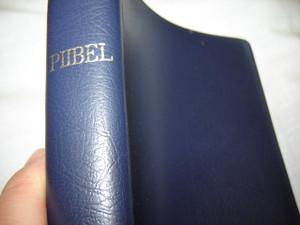 Estonian Bible / PIIBEL VANA JA UUS TESTAMENT / PIIBLISELTSI VALJAANNE / R043