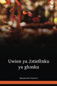 Ngangam Language New Testament / Uwien ya Jɔtiefɛ̀nku ya gbɔnku (GNGNT) / Togo, Benin