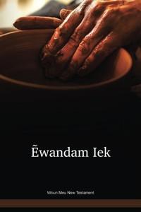 Woun Meu Language New Testament / Ẽwandam Iek (NOAANT) / Panama