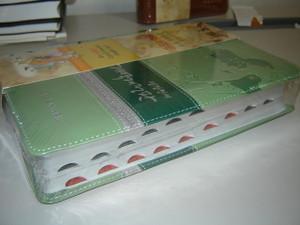 Korean Leather Bold Print Bible / New Korean Revised Version / Green