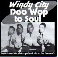 WINDY CITY DOO WOP TO SOUL (CD)